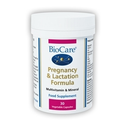 Pregnancy & Lactation Formula 60 Caps